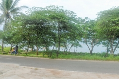 Pondok Mutiara Ibu Tanjung Lesung15